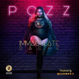 Immaculate Dache - Pozz